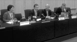 CND side event: panel discussion
