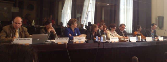 The panel at the palliative care side event on Wednesday