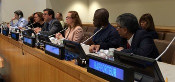Mr Mateo Estrémé (Argentina), chair, speaking at the Open Ended Working Group on Ageing 5th session