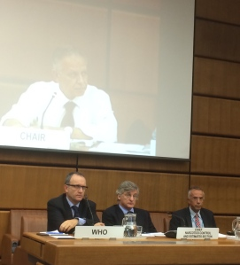 Fifth intersessional meeting of the Commission on Narcotic Drugs: Left to right: Dr Gilles Forte (WHO), Dr Stefano Berterame (INCB), Dr Gilberto Gerra (INCB); Ambassador Shamaa (Egypt) CND Chair (screen)