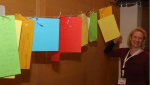Colourful lives of volunteers in Europe: Participants' stories were written on coloured cards to link to the title of the symposium