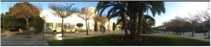 Faculty of Health Sciences, University of Alicante, Spain